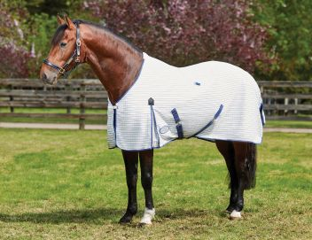 Summer Sheet Standard Neck With Freestyle Tail III